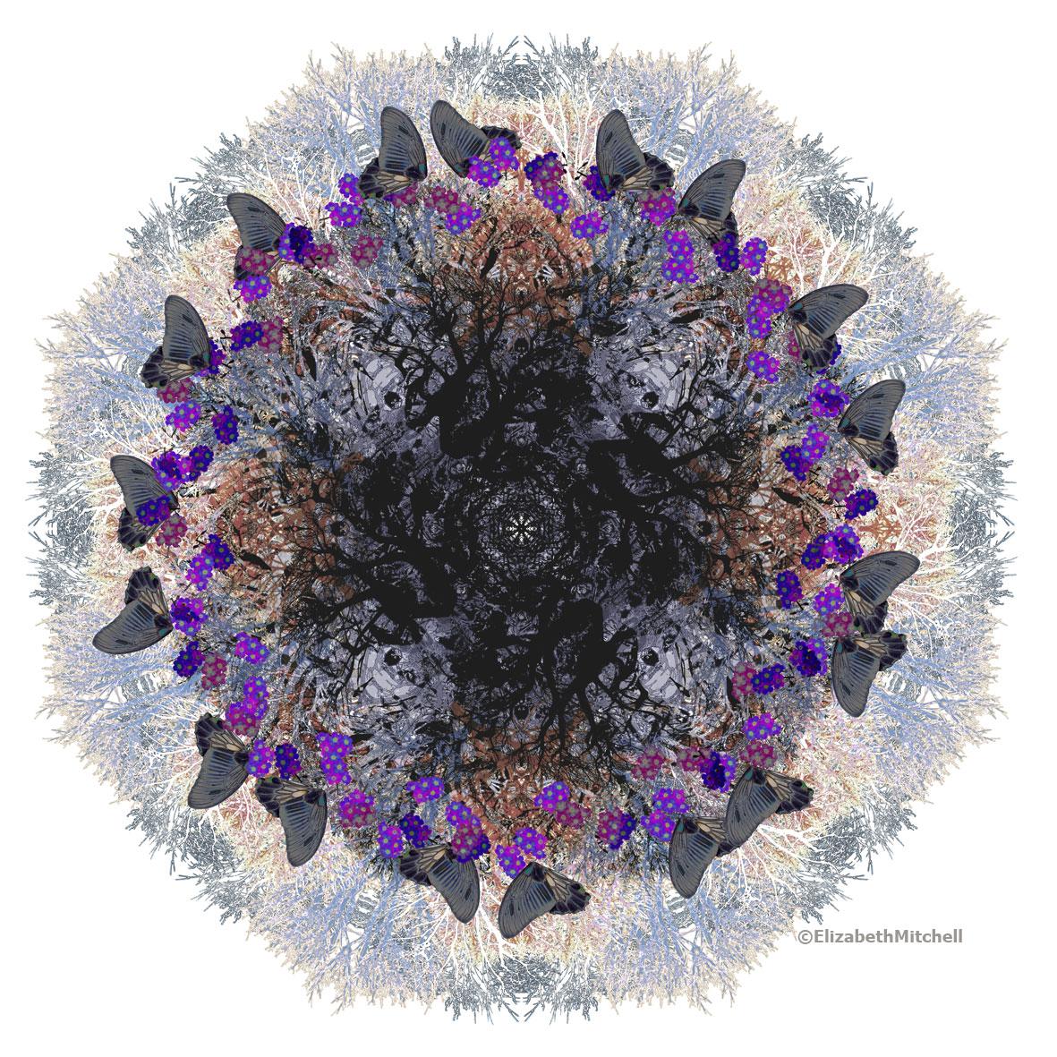 Contemplation-Bouquet