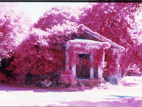 Infrared Film Photography