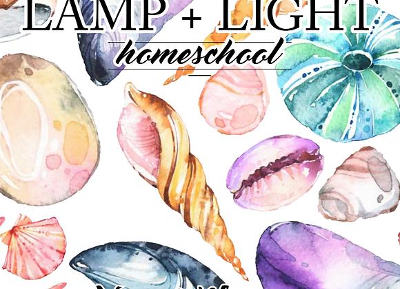 Lamp + Light Year 2 Planner - Digital Download