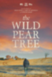 Wild Pear Tree Poster