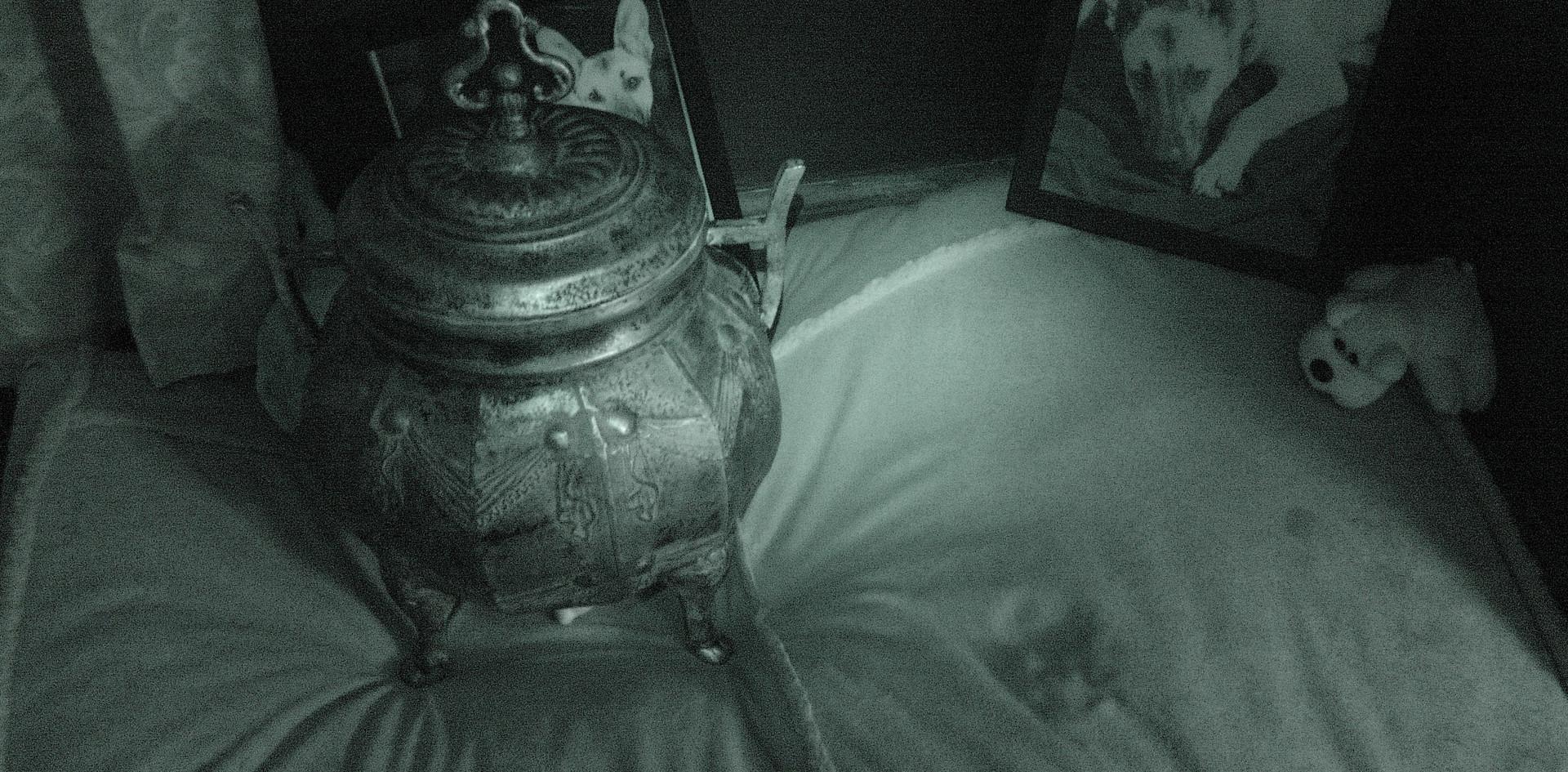 Ghostly Dog Paw IR-2.jpg