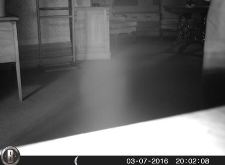 Manresa Castle ghost appears.
