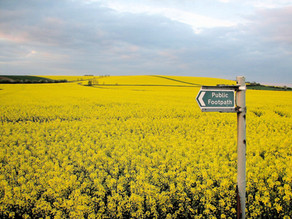 Case study: Derbyshire County Council Countryside Services