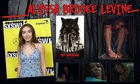 Alyssa Brooke Levine Banner 1.jpg