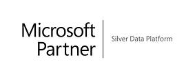 Microsoft Silver Data Platform_grey.png