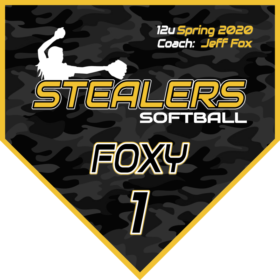 Stealers 2020  Pennant (1).png