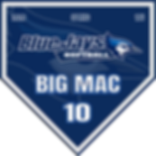 BlueJays Plate Pennant (2).png