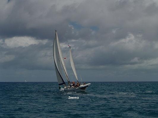 bateau zeemo_rt - Copie.jpg