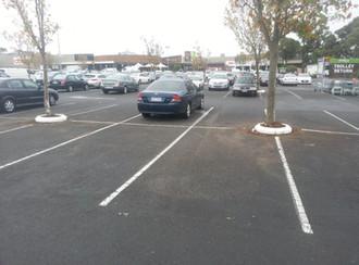 rubber kerb carpark tree surrender.jpg