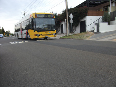 bus friendly speed cushion.JPG