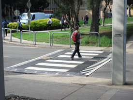 wombat crossing.JPG