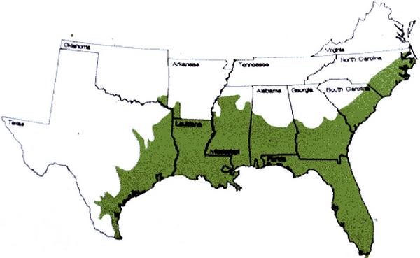 Range-of-American-alligator-Alligator-mi