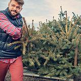 Loading Christmas Trees