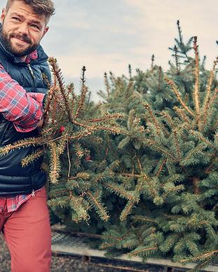 Laden Weihnachtsbaum