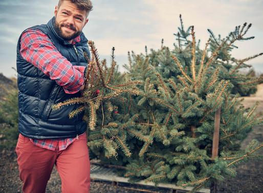 Weihnachten steht vor der Tür! Hast Du schon ein Geschenk?
