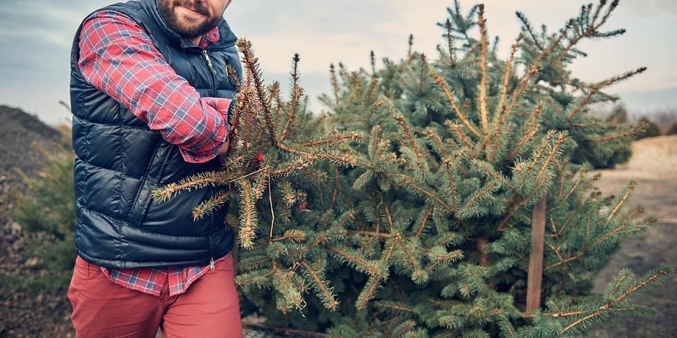John Wilkinson Memorial Christmas Tree Pick Up