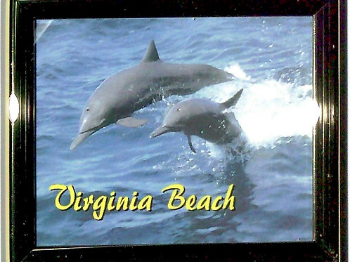 30612 - Framed Magnet VB Dolphins