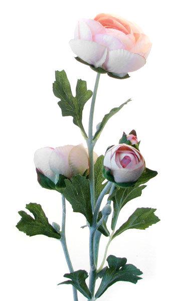 Ранункулус розовый, Top Art Studio, HAF0358-TA