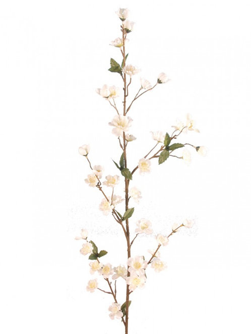 Ветка цветущей белой яблони, Top Art Studio