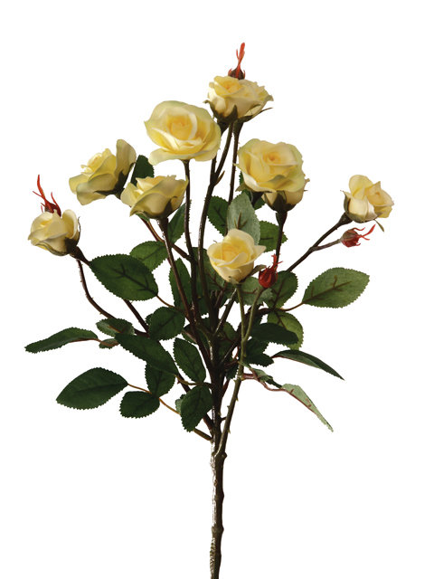 "Роза ""Буша"" кустовая желтая, Top Art Studio, 11547Y"