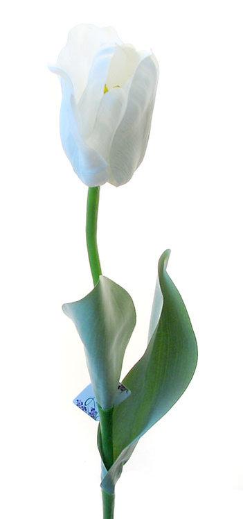 "Тюльпан ""Эн Росарио"" белый, Top Art Studio, WAF0061-TA"