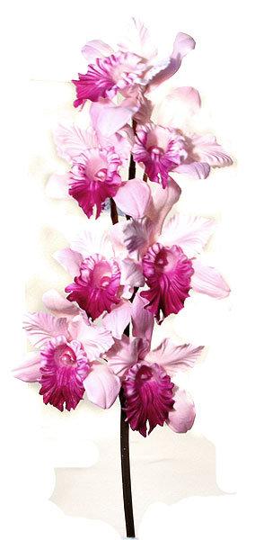 Орхидея Каттлея фиолетовая Top Art Studio, производство Франция.