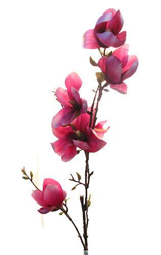Ветка магнолии темно-розовая, Top Art Studio