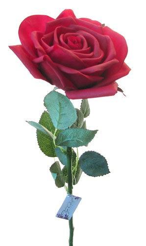 """Роза """"Гран При"""" бордо, Top Art Studio, WAF0326-TA"""