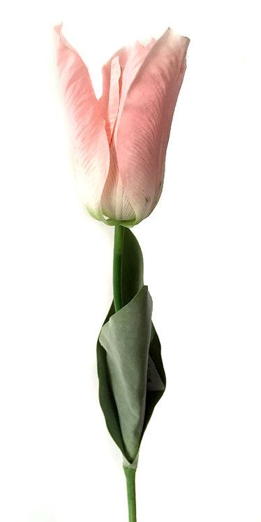 """Тюльпан """"Фаворит"""" розовый, Top Art Studio, WAF1267-TA"""