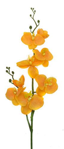 Фаленопсис оранжевый, «Top Art Studio», E024H-7