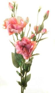 Лизиантус розовый, Top Art Studio, HAF0346-TA