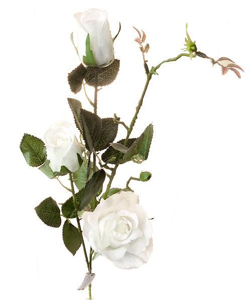 """Роза """"Эльдорадо"""" кустовая белая, Top Art Studio, WAF0584-TA"""