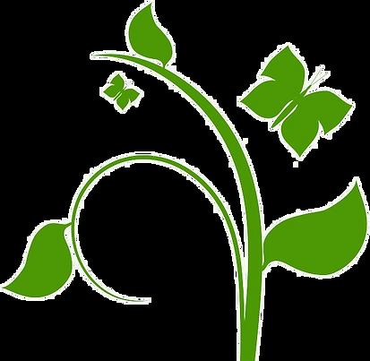 Plante et papillon