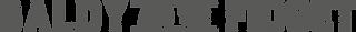 baldyandthefidget-logo-long-med.png