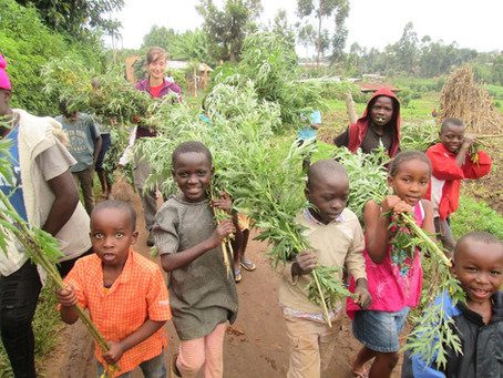 Sustainable Housing & Agriculture: Reaching Everyone In Kenya & Beyond