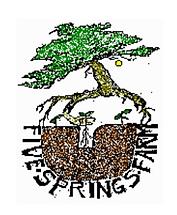 5springs.png