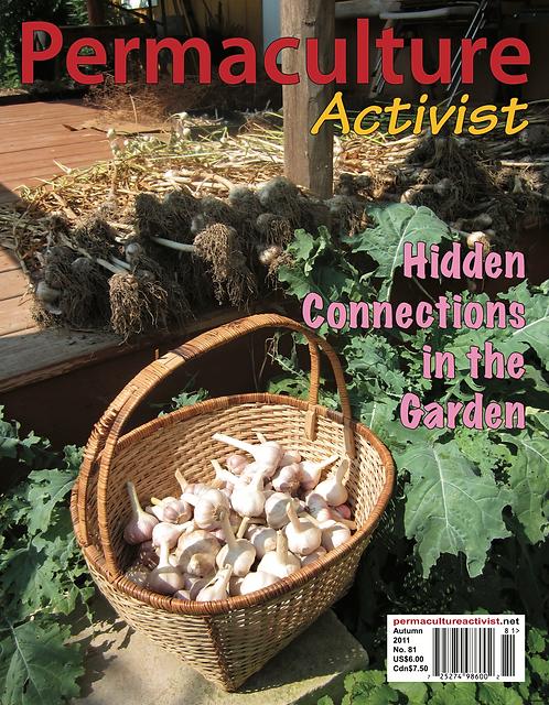 #81 Autumn 2011 | Hidden Connections in the Garden