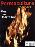 #54, Winter 2004 Fire and Catastrophe