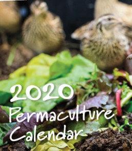 2020 Permacutlure Calendar
