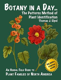 Botany in a Day – The Patterns Method of Plant Identification