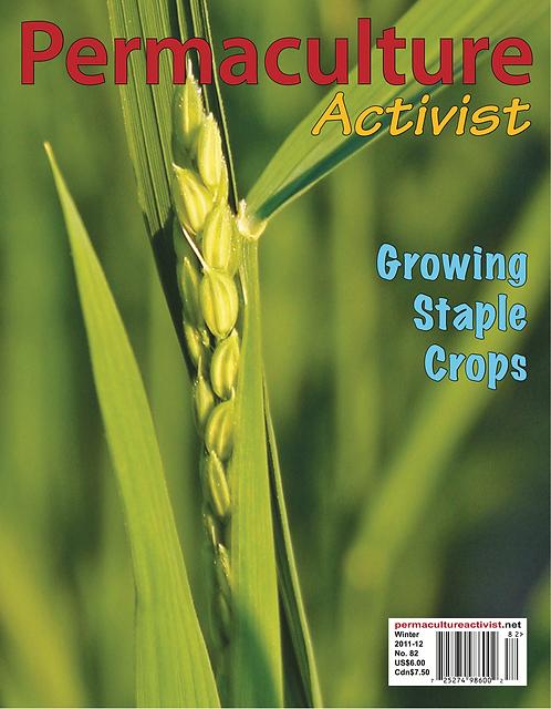 #82 Winter 2012 | Growing Staple Crops