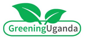 Greening Uganda: You can help.