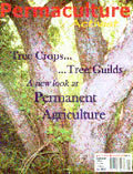 #56 Summer 2005 Tree Crops..Tree Guilds: A New Look at Permanent Agriculture