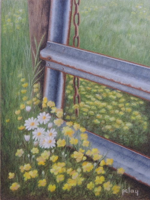 """Springtime on the Farm"""