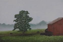 """Early Morning Fog"""