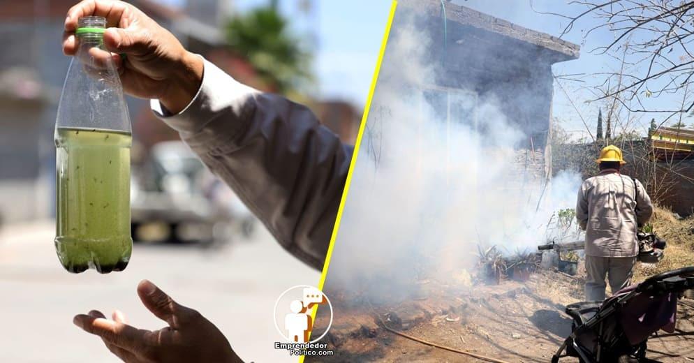 A la baja casos de dengue en Lázaro Cárdenas: SSM