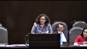Diputada Federal María Chávez