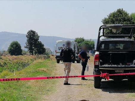 Macabro hallazgo de 8 personas asesinadas en Michoacán