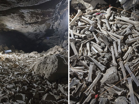 En esta cueva de hienas descubren decenas de miles de huesos, incluidos restos humanos
