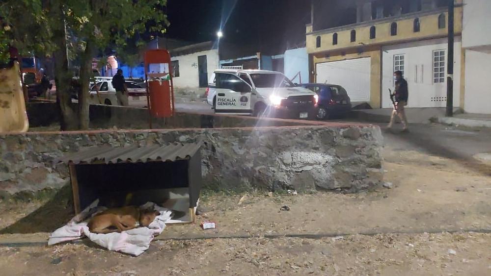 Asesinan a una persona en el interior de un domicilio en la colonia Jesús Romero Flores, Morelia